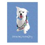 Perro mullido blanco - amor de la alegría de la tarjetas postales