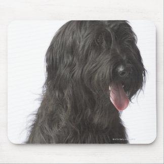 Perro negro, Briard Alfombrilla De Ratones