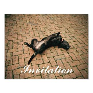 Perro negro cómodo invitación 10,8 x 13,9 cm