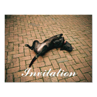 """Perro negro cómodo invitación 4.25"""" x 5.5"""""""