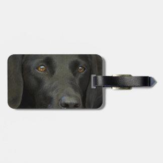 Perro negro de Labrador Etiquetas Maletas