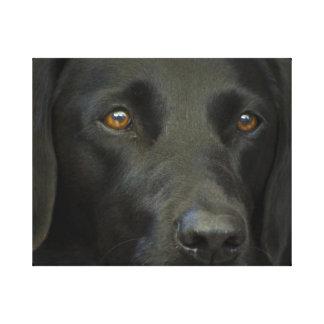 Perro negro de Labrador Impresiones En Lienzo Estiradas