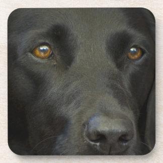 Perro negro de Labrador Posavasos De Bebidas