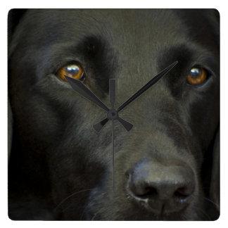 Perro negro de Labrador Reloj Cuadrado