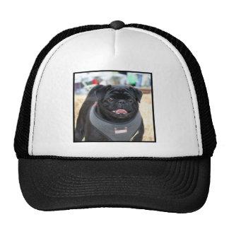 Perro negro del barro amasado gorra