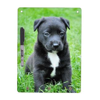 Perro negro del bebé pizarra