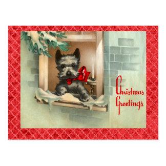 Perro negro del escocés en rojo de la ventana postal