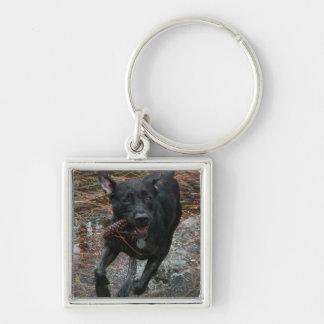Perro negro del laboratorio con el funcionamiento  llaveros