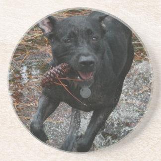 Perro negro del laboratorio con el funcionamiento  posavasos manualidades