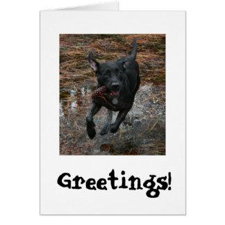 Perro negro del laboratorio con el funcionamiento tarjeta de felicitación