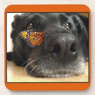 Perro negro del laboratorio con la mariposa posavasos
