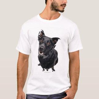 Perro negro playera