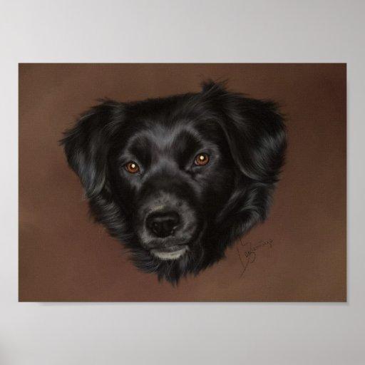 Perro negro posters