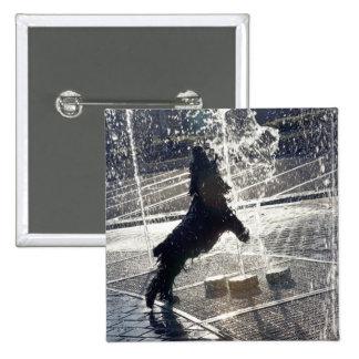 Perro negro que salta a través de la fuente en ori pin cuadrada 5 cm