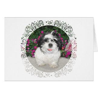 Perro negro y blanco del rescate del perrito de tarjeta de felicitación