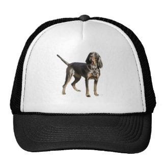 Perro negro y del moreno americano del Coon Gorro De Camionero