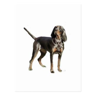 Perro negro y del moreno americano del Coon Postales
