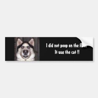 ¡Perro, no hice impulso en el piso que era el gato Pegatina Para Auto