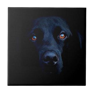 Perro oscuro animal abstracto azulejo ceramica