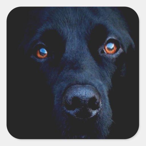 Perro oscuro animal abstracto pegatina cuadrada