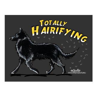 Perro pastor belga totalmente Hairifying Tarjetas Postales