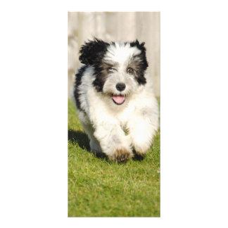 Perro pastor Bobtail lindo Lona Personalizada