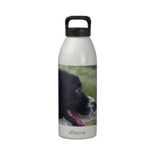 Perro pastor búlgaro botella de agua reutilizable