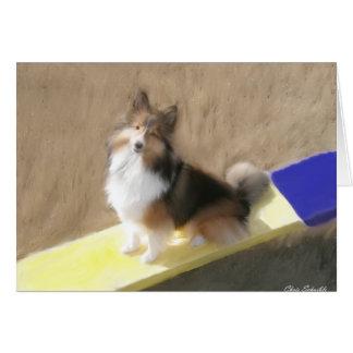 Perro pastor de CuteShetland que se sienta en un b Tarjeta Pequeña
