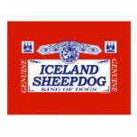 Perro pastor de Islandia Tarjeta Postal