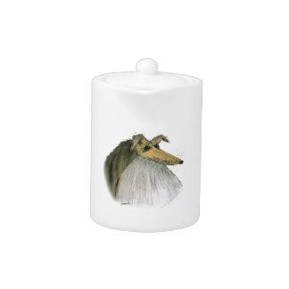 Perro pastor de Shetland, fernandes tony