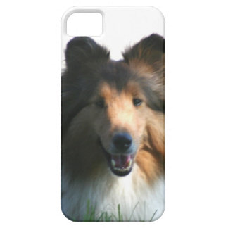 Perro pastor de Shetland Funda Para iPhone SE/5/5s