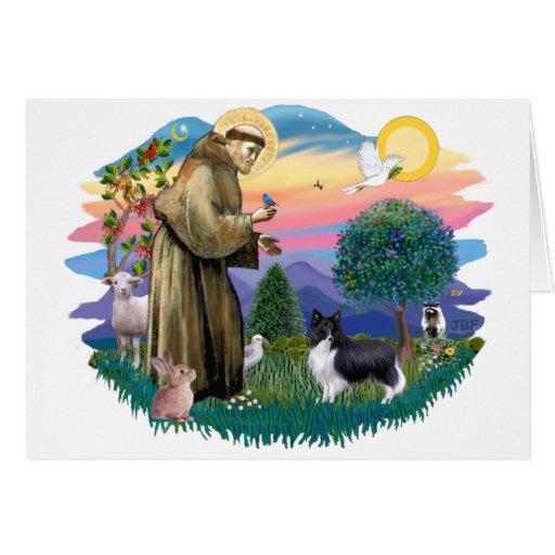 Perro pastor de Shetland (negro del BI) Tarjeta De Felicitación