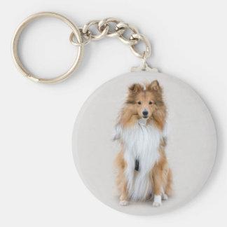 Perro pastor de Shetland, retrato lindo de la foto Llavero Redondo Tipo Pin