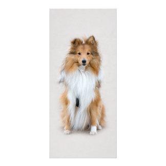 Perro pastor de Shetland, señal del personalizado  Diseños De Tarjetas Publicitarias