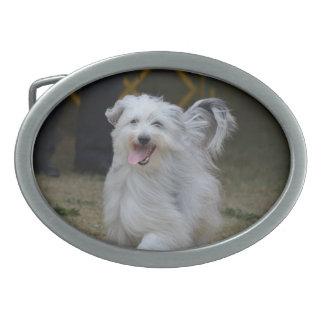 Perro pastor dulce hebilla de cinturón oval