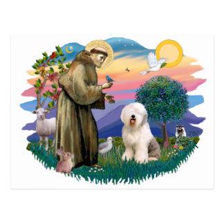 Perro pastor inglés viejo (#6) tarjetas postales