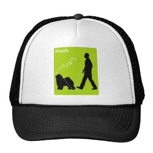 Perro pastor inglés viejo gorras
