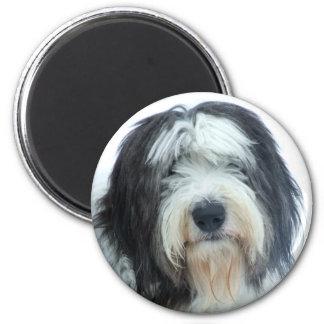 Perro pastor inglés viejo imán redondo 5 cm