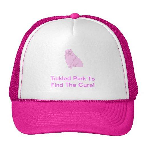 Perro pastor inglés viejo rosado gorra