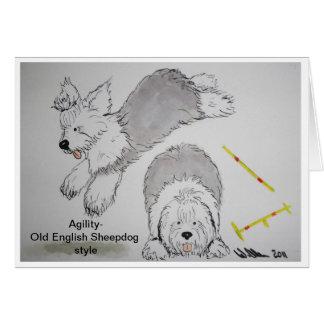Perro pastor inglés viejo - tarjetas de nota de la