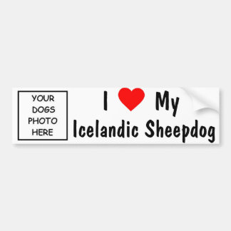 Perro pastor islandés pegatina para auto