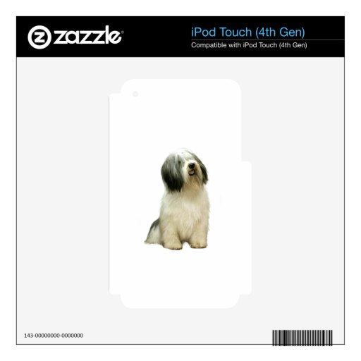 Perro pastor polaco de la tierra baja (PON) - A iPod Touch 4G Skin