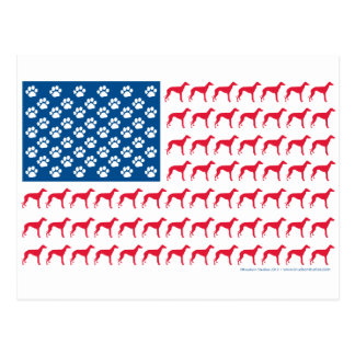 Perro patriótico del galgo tarjeta postal