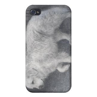 perro pedigrí i los grandes Pirineos iPhone 4 Fundas