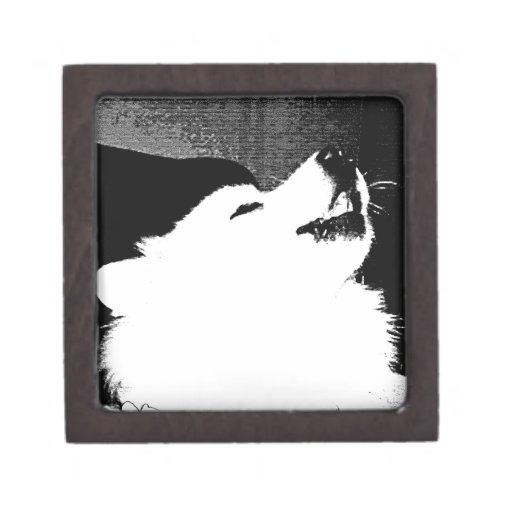 Perro peludo hermoso del blanco del samoyedo cajas de recuerdo de calidad