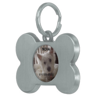 Perro perdiguero auténtico del compinche placa mascota