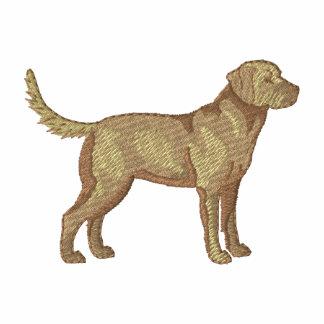 Perro perdiguero de bahía de Chesapeake
