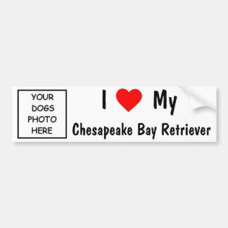 Perro perdiguero de bahía de Chesapeake Pegatina Para Auto