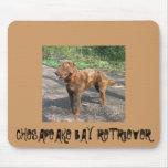 Perro perdiguero de Chesapeakebay Alfombrillas De Raton