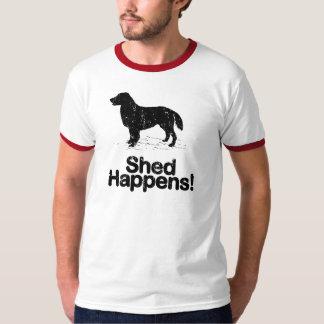 Perro perdiguero Plano-Revestido Poleras